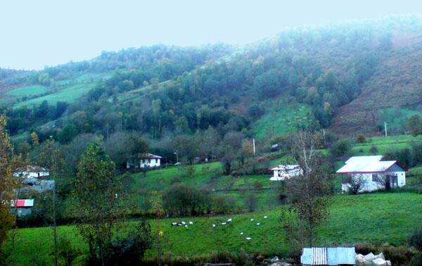 روستای ییلاقی ارده